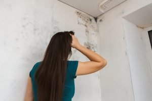 image of a woman looking at mold infestation