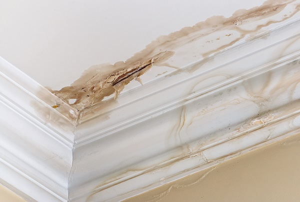 4 Unexpected Dangers of a Leaky Roof