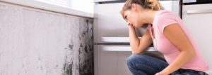 Ways to Spot Mold in your Home