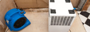 Inexpensive Tips for water damage restoration