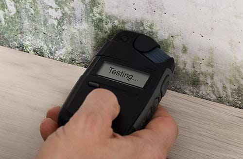 Mold Testing Mold Remediation & Repair