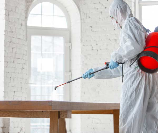 Water Damage Cleanup and Mold Remediation