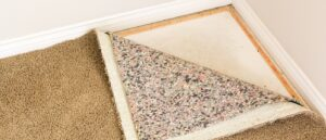 How To Prevent Carpet Mold After Flooding