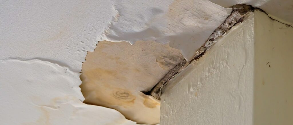 How Much Do Water Damage Repair Cost Anyways